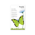 Butterfly Sticky Notes 카테라니아나비 (Medium)