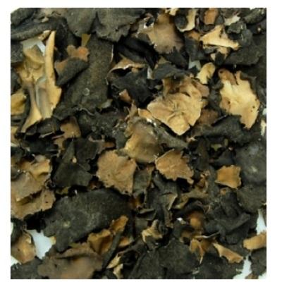 국내산 자연산 건조 석이버섯 100g : 석류매실흑초마트