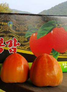 유기농 대봉감 5kg (19과)