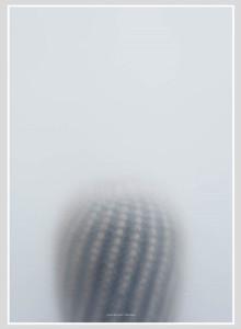 Kristina Dam Studio Ball Cactus-I Poster, 북유럽인테리어포스터