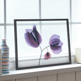 [파블로랩] 북유럽 인테리어 투명 액자 CLEAR ART - Violet Flowers 01