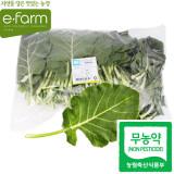 [이팜] 쌈케일(무농약이상)1kg
