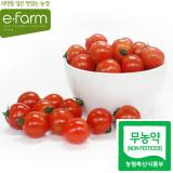[이팜] 방울토마토(무농약/특/3번과)500g