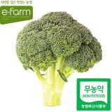 [이팜] 브로콜리(200g)(무농약이상)