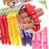 Spet 강아지 고양이 패션컬러목줄 (목둘레25~40cm/폭1.5cm) - 색상임의
