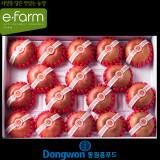 [이팜] [2016추석](D-2예약) 사과 세트 17~19과 5kg