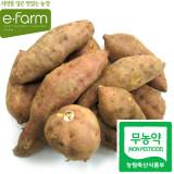 [이팜] 호박고구마(무농약이상/국산)3kg
