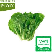 [이팜] 얼갈이배추(400g)(무농약이상)