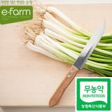 [이팜] 친환경 실파(200g)(무농약이상)
