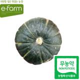 [이팜] 무농약 미니 단호박(250g이상)