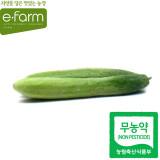 [이팜] 백다다기오이(2개입)(무농약이상)
