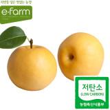 [이팜] 저탄소 신고 배(특1번과) 2입