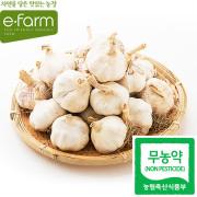 [이팜] 무농약 통마늘(1kg)