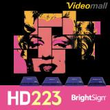 [Brightsign]HD223 브라이트사인 네트워크 지원가능