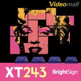 [Brightsign]XT243 브라이트사인 네트워크 기반 기본 인터렉티브 플레이어