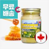 캐나다 민들레 꿀 500g