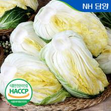 절임배추 20kg 10kg HACCP인증