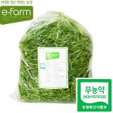 [이팜] 무농약 세발나물(500g)