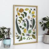 유럽산 우드프레임 투명액자 CLEAR ART - Leaves & Flowers #01