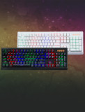 TRON G10K RGB 조명 기계식키보드 청/갈/적 오테뮤축