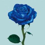 [J]Blue-rose_Poster