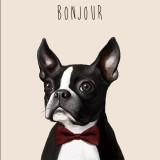 [May]Bonjour-Bulldog_Poster