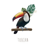 [May]Toucan_Poster