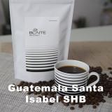 과테말라 산타 이사벨 (200g)