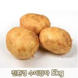 [큰손농원]친환경 수미감자 5kg