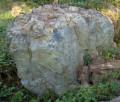 청송꽃돌 청국화 자연석 정원석 조경석 320x150x120cm 13톤