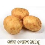 [큰손농원]친환경 수미감자 20kg
