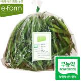 [이팜] 무농약 청양고추(1kg)