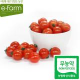 [이팜] 무농약 방울토마토(특)(500g)