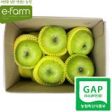 [이팜] [GAP인증] 아오리 사과 (특)(2kg)