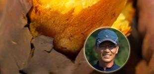 새순농장 17년 햇 꿀고구마 5kg 특상