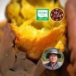 땅끝참고구마농장 2017년 햇 꿀고구마 5kg 특상