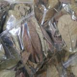 알몬드잎 100g 벌크