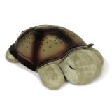 클라우드 비 온더고 슬립 터틀 잠자는 거북이 인형(야간 불빛) Cloud B Twilight Constellation Night Light - Turtle