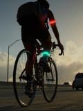 [루틴스포츠] LED스포츠밴드, LED팔찌, LED밴드,야광팔찌