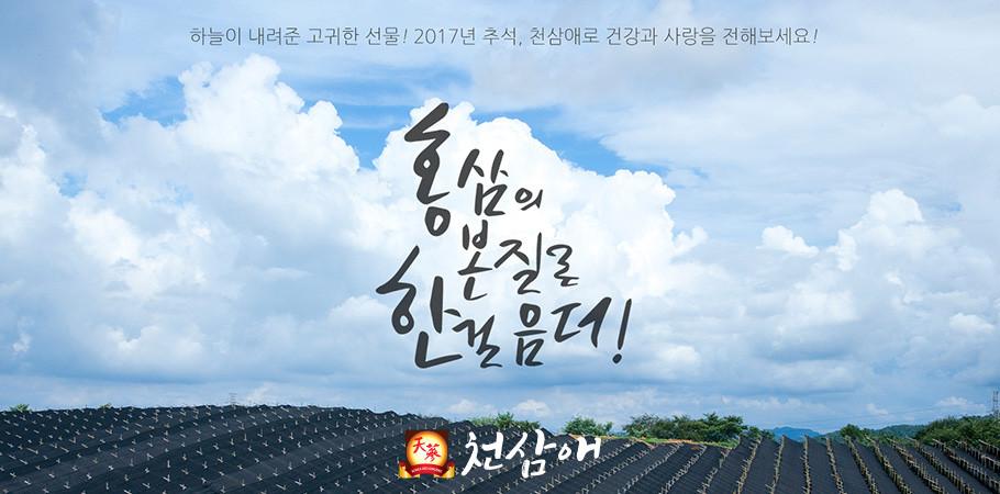 천삼애 6년근 고려홍삼 골드스틱 10g x 30포
