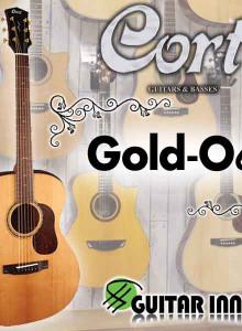 통기타추천 / Gold-O6 / 콜트 골드 O6 / 쿠폰할인