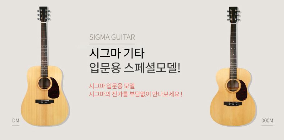 시그마기타 DM / 입문용기타 / 시그마입문용