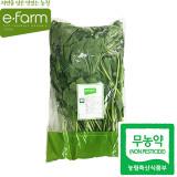 [이팜] 아욱(250g)(무농약이상)
