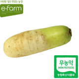 [이팜] 무(800g이상)(무농약이상)