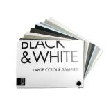 NCS Black & White (엔씨에스 블랙 & 화이트)