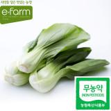 [이팜] 무농약 청경채(200g)