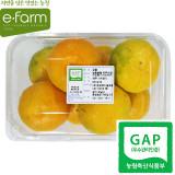 [이팜] [GAP인증] 노지 감귤(L~2L 특)(850g)
