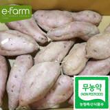 [이팜] 호박고구마3kg (무농약이상)