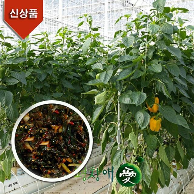 파프리카잎김치 500g 1Kg 건강에 좋아요!