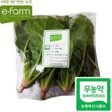 [이팜] 무농약 섬초 시금치 (200g)